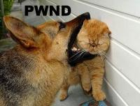 pwn3d-44295.jpg