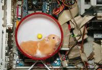 hamster_powered_computer_xsmall.jpg