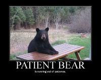 PatientBear-s750x600-179056.jpg